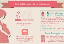 dodicesima settimana di gravidanza 12 settimane