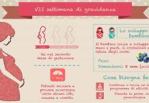 Settima settimana di gravidanza