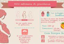 17 settimana di gravidanza