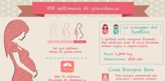 30 settimana di gravidanza trentesima settimana