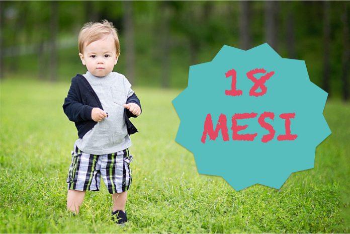 Bambino 18 mesi